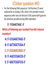 Cliker question chpt 15-17