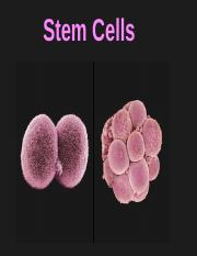 Lecture 8 Stem Cells