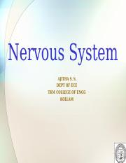 BMI14-Nervous System.ppt