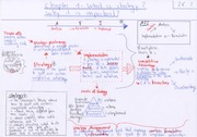 Chart Summary- Chapter 1 - What is strategy-