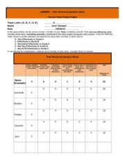 HRM598_Peer_Review_Evaluation_Sheet-2