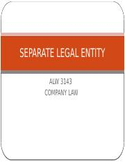 3 SEPARATE LEGAL ENTITY
