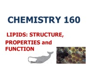 1.-Lipid-Structure-and-Function