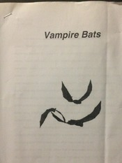 VAMPIRE DEPICTION IN MASS MEDIA: ESSAY
