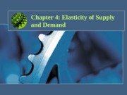 Chapter 4 Elasticity(student)