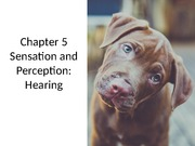 3+Sensation+and+Perception+-+Hearing  - lecture Psych/Neuro 3515