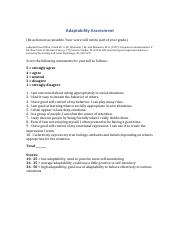 Adaptability Assessment-2.pdf