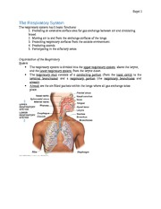 Notes on Respiratory System