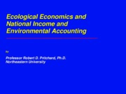 Ecological Economics and  Accounting