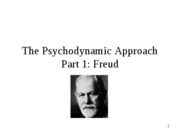 The Psychodynamic Approach_2012