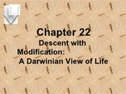 Chapter_22