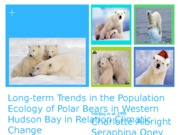 BISC 113 Polar Bear PPT