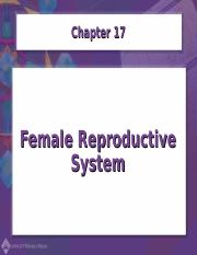 Chapter17-Female Reproductive