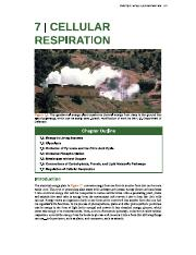 Chapter07_Cellular_Respiration.pdf