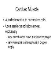 Muscle 4.ppt