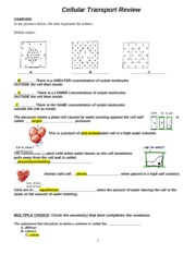 Worksheets Cellular Transport Worksheet cellular transport worksheet cell answers cxpz info