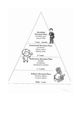 Triangle- 4 phase worksheet