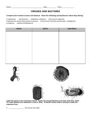 VIRUSES AND BACTERIA Worksheet.doc - Name Date Class VIRUSES AND ...