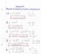 Derivatives of Composite Trig Functions with Applications Assignment