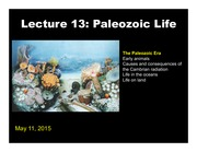 lecture 13 Paleozoic life