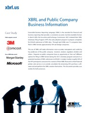 XBRL_all_case_studies