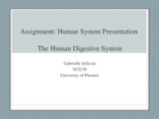 Assignment- Human System Presentation-week#5-Gabrielle Jeffcoat