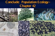 PF14-Lecture 4- Population Growth-Chpt42- Sept 10 (1)