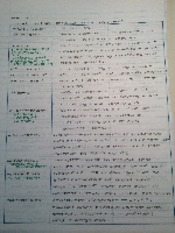 Ancient Philosophers Notes