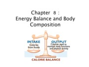 11. Energy Balance and Body Composition (Chapter 8)