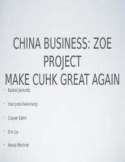 MGNT 4510 China Business Zoe project