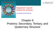 GG BIOL_CHEM_3361_002_F13_chapter6_part1