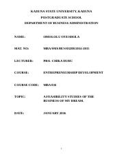 Lolu Business Plan.docx
