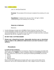 Cow eye dissection lab answer key