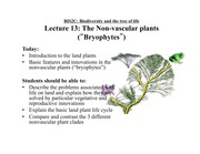 Lecture 13 on Nonvascular Plants
