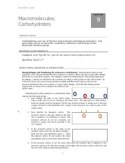Lecture 9 Carbohydrates.docx