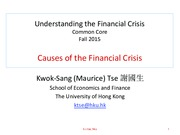 L3 Causes of the Crisis 2015.pdf