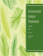 Environmental Analysis Presentation