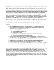 MGMT 6030 Team #2 Strategy Analysis Paper Checklist.docx