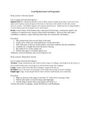 Copy of AMANDA  LEE - Fetal Pig Dissection Lab Preparation - 107595.docx