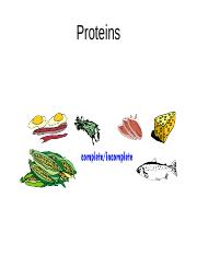 Biochem Lecture 2-Protein structure and function