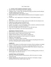 Test 3 Study Guide anatomy.docx