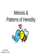 Lecture 18 Meiosis and Heredity_Spring 2016
