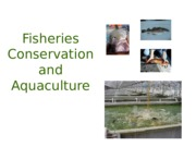 fisheries_aquaculture