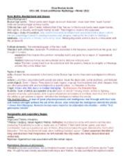 Made up myths essays