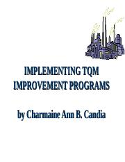 Implementing TQM Improvement Programs