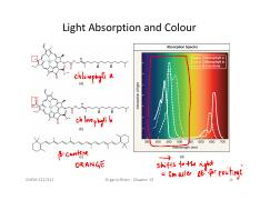 pigment UV-vis absorption.pdf