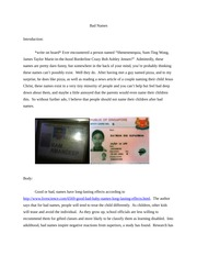 Apple customer service essay