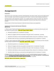 PF - Section 6 - Assignment - VIDEO_EXAMPLE.doc