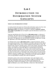 Lab 1 - Introduction to Information Systems Concepts (1).doc