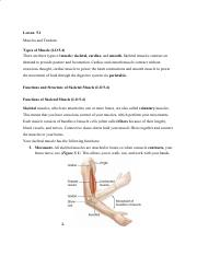 Medical Terminology Notes - Chapter 5.pdf